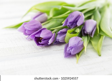 Bouquet of purple(violet) tulips on white rustic wooden background. Spring flowers. Greeting card for Valentine's Day, Woman's Day and Mother's Day. Soft view.