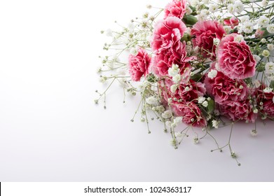 The bouquet of a red carnation