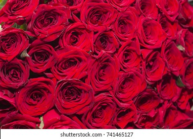 A bouquet of red roses.