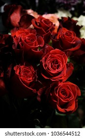 Bouquet of red roses in a flower shop.