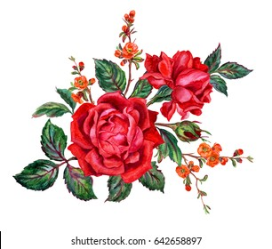 Bouquet of red roses and flowering quince branches, watercolor painting on white background.