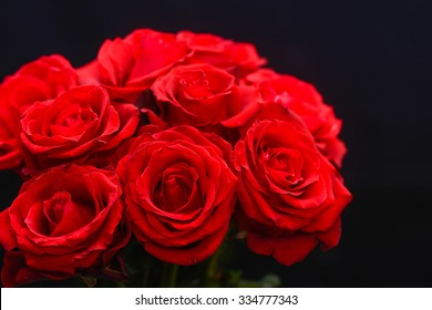 bouquet red roses on black background  bouquet red roses on black background