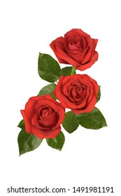 Bouquet of red roses on a white background. Isolated.