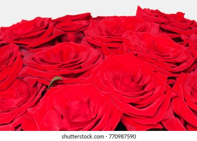Bouquet of red roses on white background isolated.