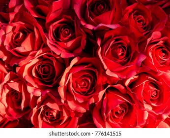 Bouquet of red roses for Valentine's Day