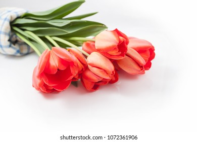 Bouquet of red tulips isolated and lies on white background.