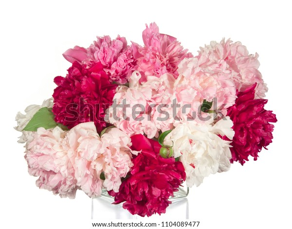 Bouquet of red, white and pink peonies on a white background