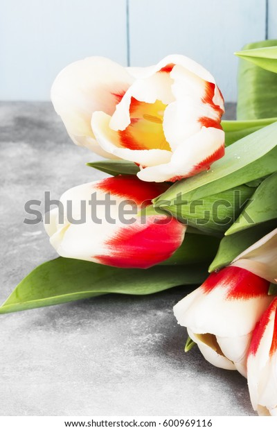 Bouquet of red-white tulips on a light background