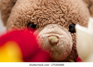 Bouquet of Rose Flowers with a Teddy Bear in the Background Close Up