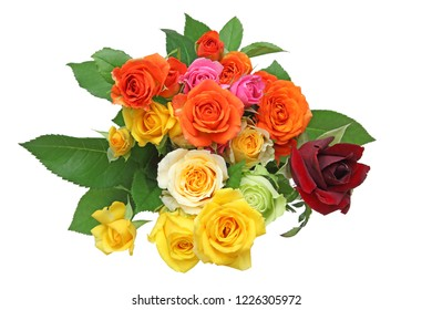 bouquet of roses in a white background