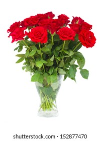 bouquet  of scarlet roses in vase    isolated on white background