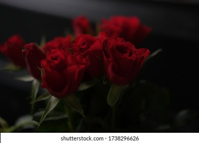 bouquet of small bloody red roses