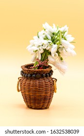 bouquet of snow drops in a basket on colored background with red and white string first of march celebration martisor concept