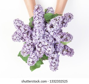 Bouquet of spring lilac flowers in woman's hand isolated on white background. Top view. Flat lay.