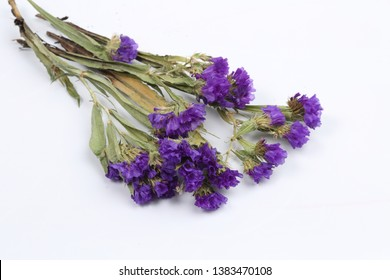 A bouquet of statice on a white background