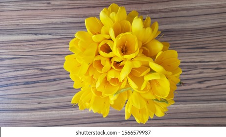 Bouquet of Sternbergia lutea (also known as the winter daffodil,  autumn daffodil, fall daffodil, lily-of-the-field, or yellow autumn crocus) flowers, top view
