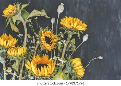 Bouquet sunflowers with camilla and poppies boxes on dark background. Autumn harvest. Fading flowers herbarium. Floral art. Floral design. Botanical background.