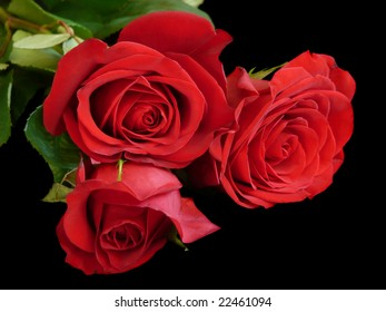 A bouquet of three red roses laying on a black background.