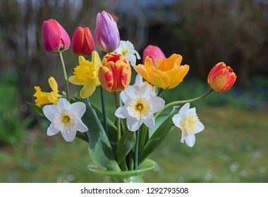 bouquet of tulip and narcissus flowers in a vase, blurry garden background