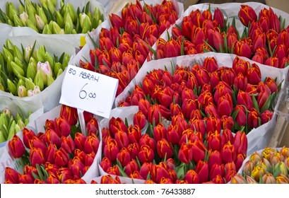 Bouquet of tulips in the flower market in Amsterdam.