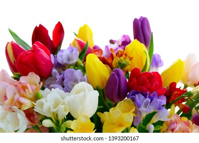 Bouquet of tulips and freesias border isolated on white background
