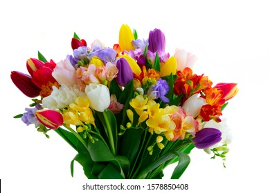 Bouquet of tulips and freesias isolated on white background close up