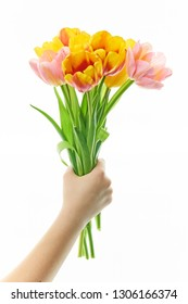 bouquet of tulips in hand on white background close-up. Concept 8 March, international women's day.