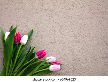 Bouquet of tulips on a gray brown texture wall, table. View from above. Flat lay