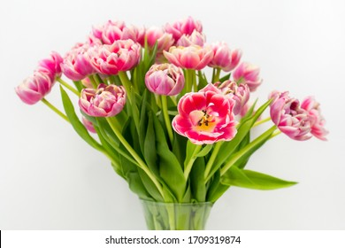 bouquet of tulips in a vase on a white background