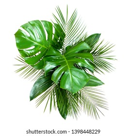 Bouquet of various fresh tropical leaves isolated on white background. Top view, flat lay