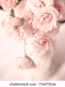 Bouquet of vintage pale pink roses