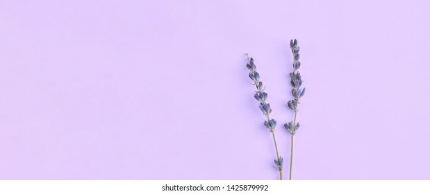 bouquet of violet lilac purple lavender flowers arranged on table background. Top view, flat lay mock up, copy space. Minimal background concept. Dry flower floral composition isolated. Spa skin care