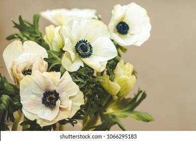 Bouquet of white anemones on a beige background. Copy space.
