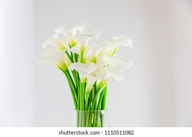bouquet of white calla