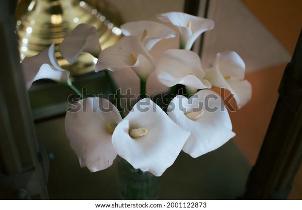bouquet-white-calla-flowers-interior-600