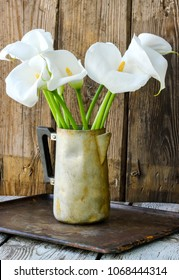Bouquet of white calla lily flowers (Zantedeschia) in old coffee pot vase, wooden background