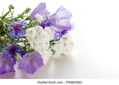 Bouquet of white flowers, bluebells and cornflowers on a white background. Space for text