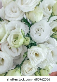 Bouquet of white flowers lisianthus from above