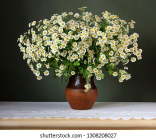 bouquet of white garden daisies on a green background. flowers in a vase on a table with a white lace tablecloth.