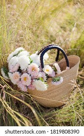 Bouquet of white and pink chrysantemums in straw bag. Bag with flowers lying on a dry grass, autumn concept