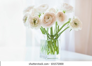 Bouquet of white ranunculus  in glass vase near the window, horizontal photo