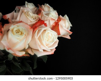Bouquet of white roses with red petals isolated on black at close-up