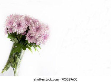 Bouquet of wild daisies on white background.