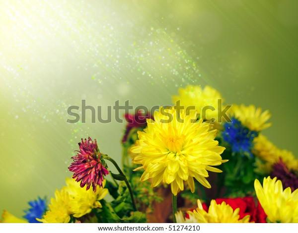 Bouquet of wild flowers in fantastic light