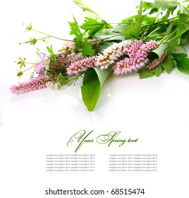Bouquet of wild flowers on a white background