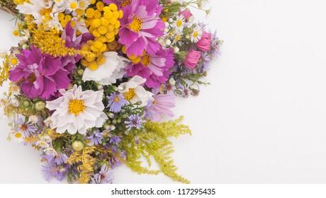 Bouquet of Wild Summer Flowers on White Background