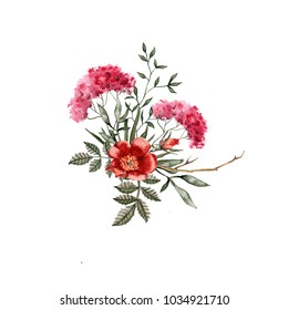 Bouquet of wildflowers. Isolated on white background. Watercolor illustration