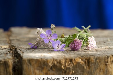 bouquet of wildflowers on the old stump