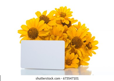 Bouquet of yellow daisies on a white background