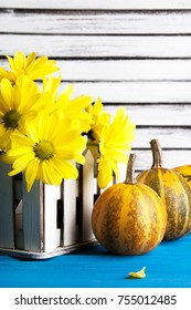 Bouquet of yellow daisies and pumpkins on wooden blue textured  background. Copy space for text
